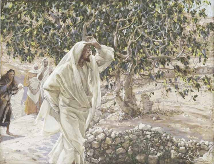 James J. Tissot: The Accursed Fig Tree