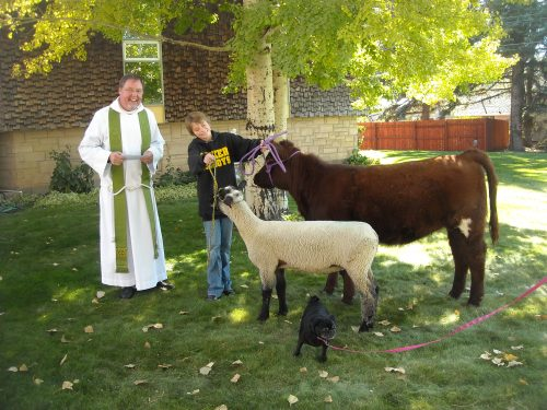 Of all the St. Francis' Day blessing-of-the-animals photos we see, this one gives us particular pleasure; look at the joy on this cowgirl's face. Her name is Macy Collins, and what handsome livestock she's raising; her dog is so small by comparison. The blessing took place in 2011 at St. James's, Meeker, Colorado, USA, with Fr. Scott Hollenbeck priest-in-charge.
