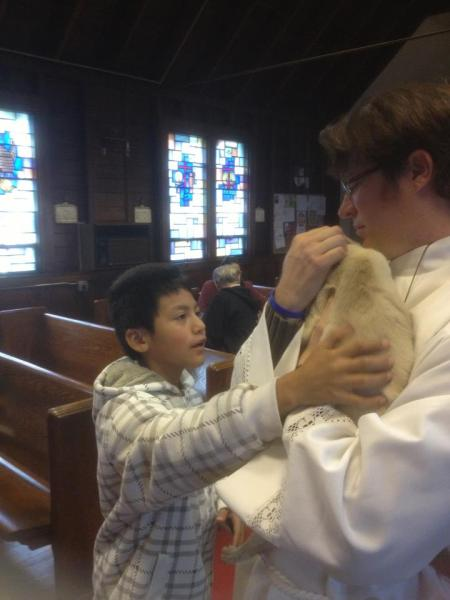 St. Francis' Day at St. Mark's, Keansburg, New Jersey, in 2012 included this graceful moment with a boy and his cat. (parish photo)