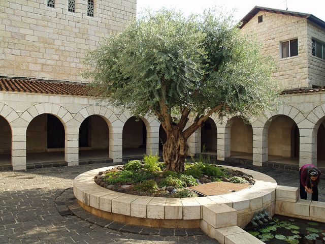 Courtyard of the Church of the Multiplication, Tagbha, Israel, said to be the site of Christ's feeding the 5000. (David Shankbone/Wikipedia)