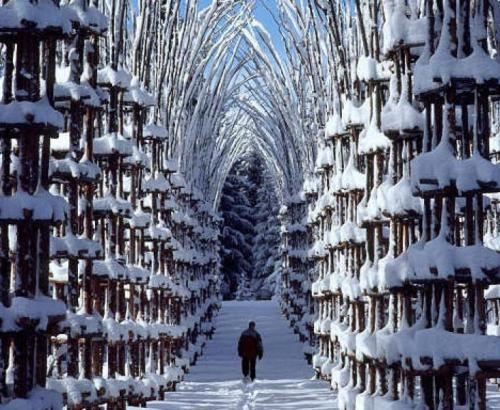 For joy in God's creation: Snow cathedral, Norway
