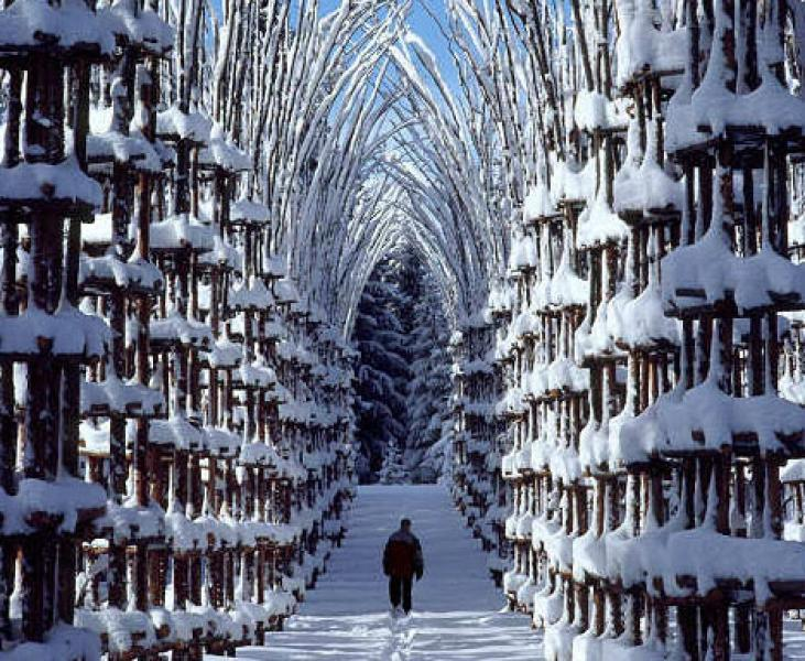 Snow cathedral in Norway. (duskyswondersite.com)