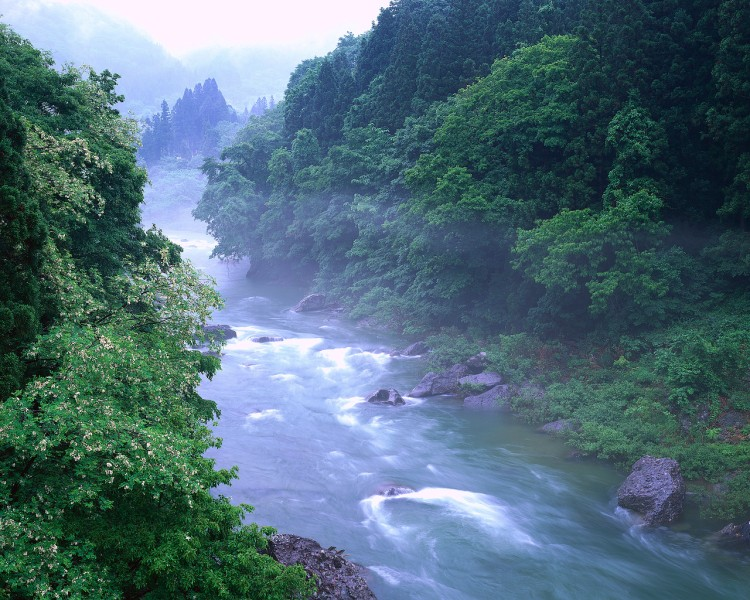 """The Tone River in Japan; """"living waters"""" is a nearly universal concept, from the Ancient Near East to the aboriginal peoples of the Americas, and refers to a river's flow. (pastormikelandry.wordpress.com)"""
