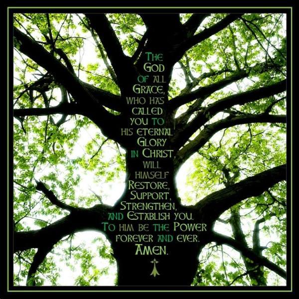 Tree&Prayer.GeorgeAChien