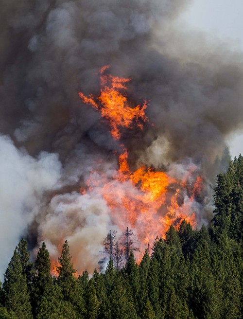 This is known as the King Fire, near Fresh Pond, California on Tuesday. (Noah Berger/Reuters)