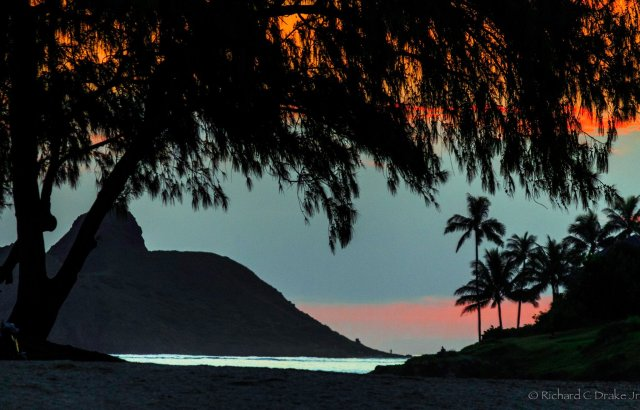 A Hawai'ian sunset. The framing of the colors by the trees overhead is nice, but what really makes this photo is the sparkling sliver of ocean down below. (Richard C. Drake, Jr.)