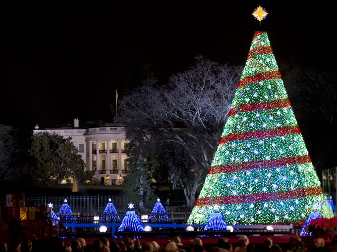The National Christmas Tree - I think it's a little too perfect, but I like the blue ones down below. (Carolyn Kaster/Associated Press)