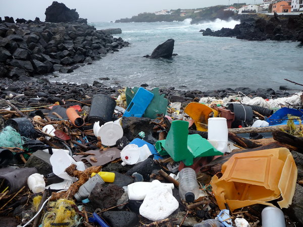 If today's lesson from Isaiah seems harsh to us, consider what God must think of sights like this: a few of the 5.25 trillion pieces of plastic floating around in the world's oceans, according to a new report. These washed up recently on a beach in the Azores. Scientists say that PCBs and other dangerous chemicals attach to the plastics, then as the pieces break up into smaller shreds, they're eaten by fish, where eventually the chemicals find their way into the human food supply. Given the scale of human sin, Isaiah may have underestimated the wrath of God. (Marcus Eriksen)