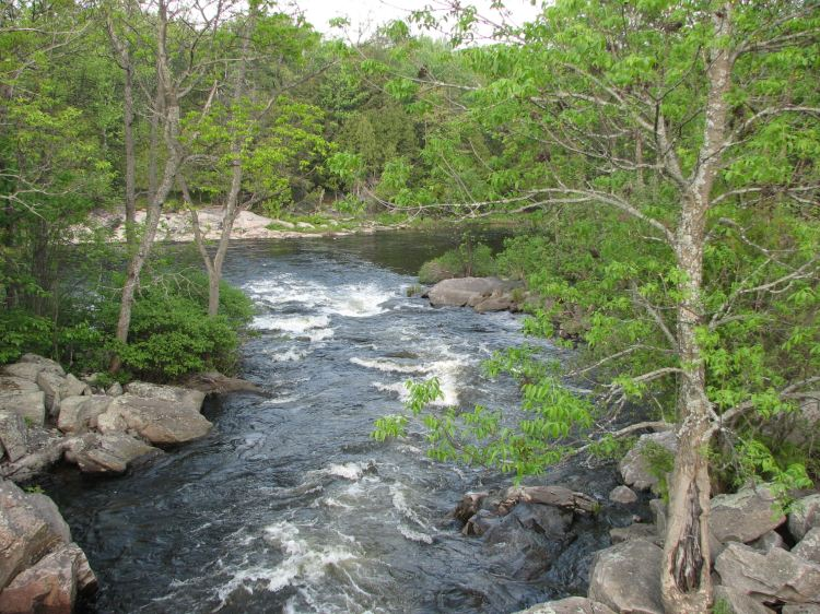 Living waters: Magnetawan River, Ontario. (Wikipedia)