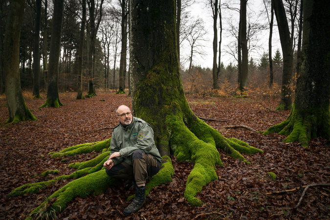 """Peter Wohlleben, a forester in Germany, is the author of the bestselling """"Hidden Life of Trees,"""" which puts in understandable, though anthropomorphic, terms what scientists have known for some time: that trees are social creatures. They communicate with each other, nurture and help each other; they can count, learn and remember, warn each other of predators and care for the dying. A few people even believe they have a spiritual consciousness, but so far there are few such discoveries. (Gordon Welters/The New York Times)"""