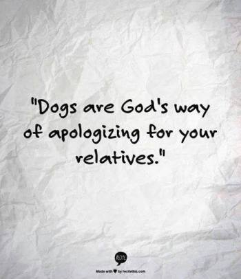 Dogs are God's apology
