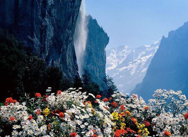 For joy in God's creation: Jungfrau Mountain Range, Switzerland. (source unknown)