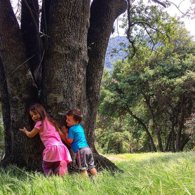 Junior tree-huggers: start 'em young. (Tim Hawks-Malczynski)
