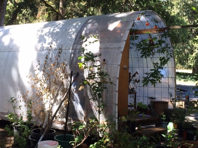 """Church of the Resurrection in Eugene, Oregon is helping combat the local homeless problem by putting up small individual shelters in a secluded corner of the church parking lot. They call these """"Conestoga"""" huts because the frames resemble the hoop-and-cloth-framed wagons many Americans used to settle the West. When colder weather arrives, the huts will be replaced with tiny wood dwellings and a little shared community space. Best of all is the privacy afforded to residents, in an unused corner next to a stand of trees. (KVAL-TV)"""