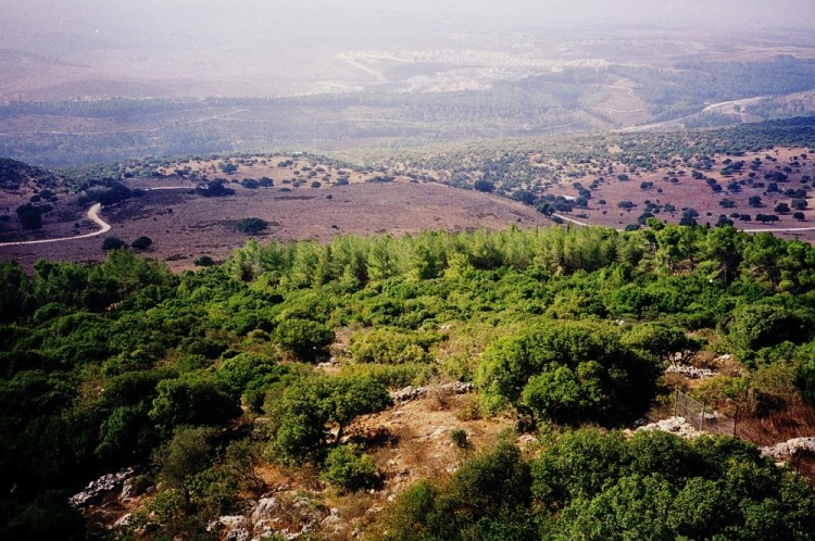 The hill country of Judah, overlooking the territory of Dan. (thebiblejourney.org)