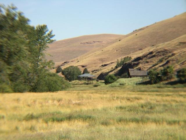 For joy in God's creation: a hillside in the Diocese of Eastern Oregon. (Bishop Nedi Rivera)
