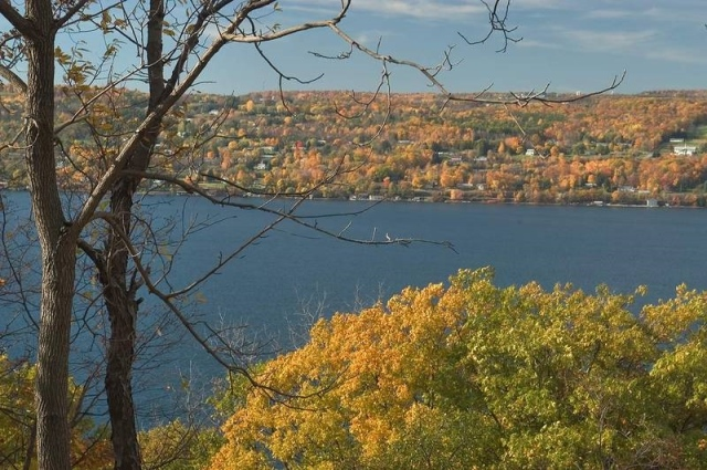 For joy in God's creation: Seneca Lake, New York, from the east. (The Rev. Michael Hartney)