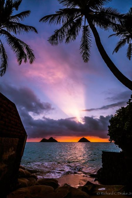 For joy in God's creation: sunrise at Lanakai Beach, Oahu. (Richard Drake)