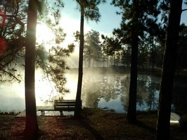 For joy in God's creation: typical morning fog over the lake at Camp Hardtner, Louisiana, where our webcast regular Tom Welch is director. Hardtner Camp and Conference Center celebrates its 75th anniversary this Saturday with a party, silent auction and raffle. (camp website)