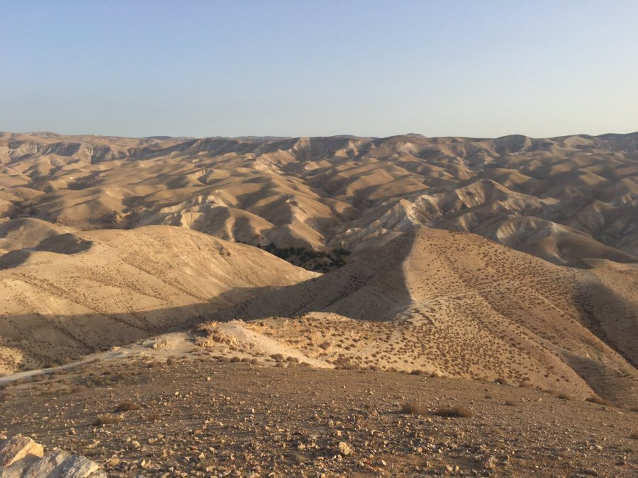 For the beauty of the Earth: Walt Qelt Valley between Jerusalem and Jericho. (Caroline Carson)